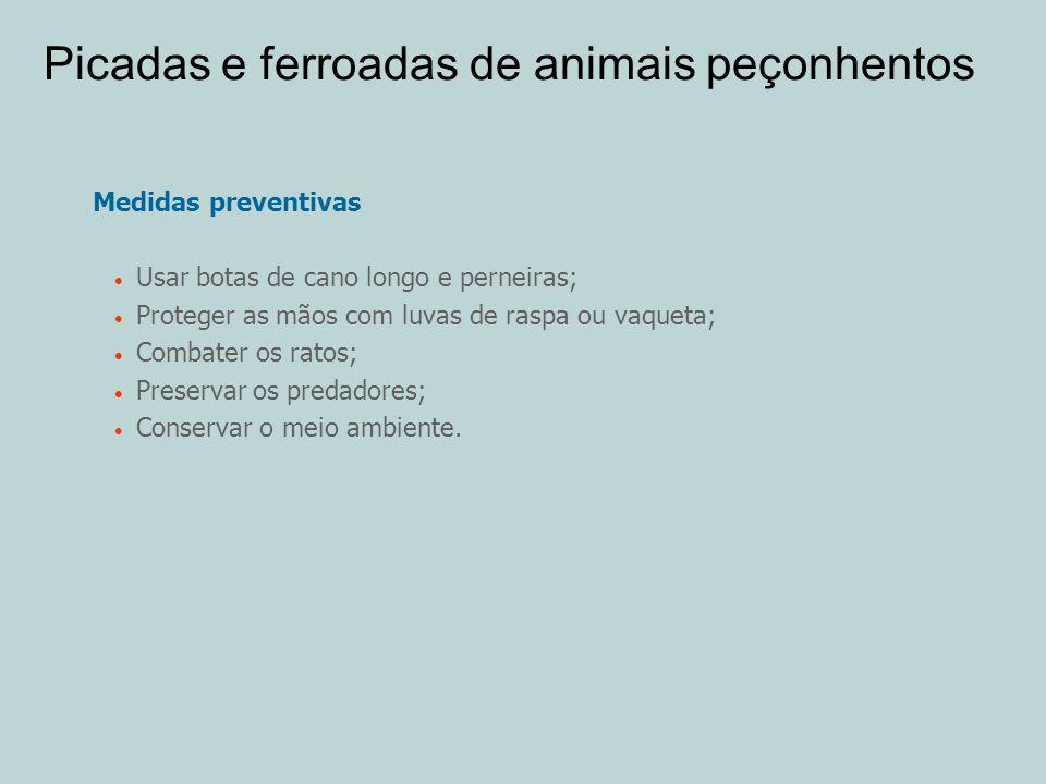 Picadas e ferroadas de animais peçonhentos Medidas preventivas Usar botas de cano longo e perneiras; Proteger as mãos com luvas de raspa ou vaqueta; C