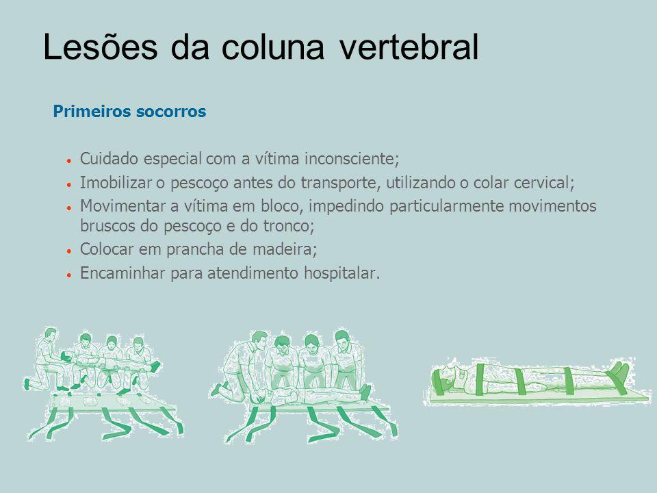 Lesões da coluna vertebral Primeiros socorros Cuidado especial com a vítima inconsciente; Imobilizar o pescoço antes do transporte, utilizando o colar
