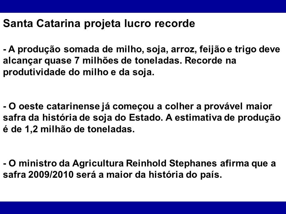 Santa Catarina projeta lucro recorde - A produção somada de milho, soja, arroz, feijão e trigo deve alcançar quase 7 milhões de toneladas. Recorde na