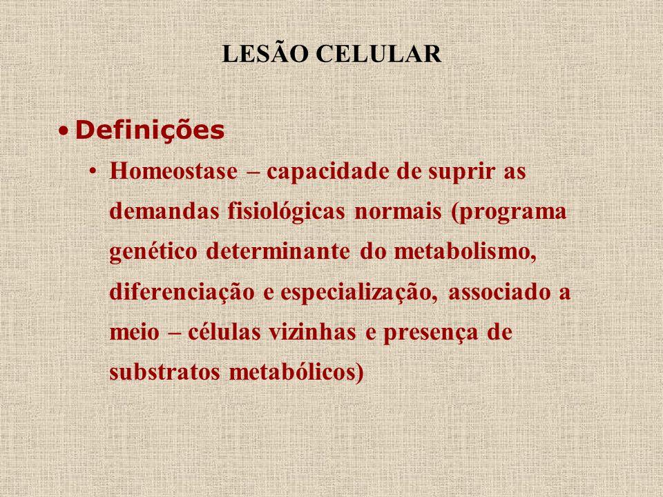 LESÃO CELULAR Definições Homeostase – capacidade de suprir as demandas fisiológicas normais (programa genético determinante do metabolismo, diferencia