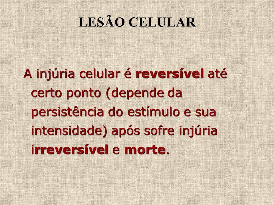 LESÃO CELULAR A injúria celular é reversível até certo ponto (depende da persistência do estímulo e sua intensidade) após sofre injúria irreversível e