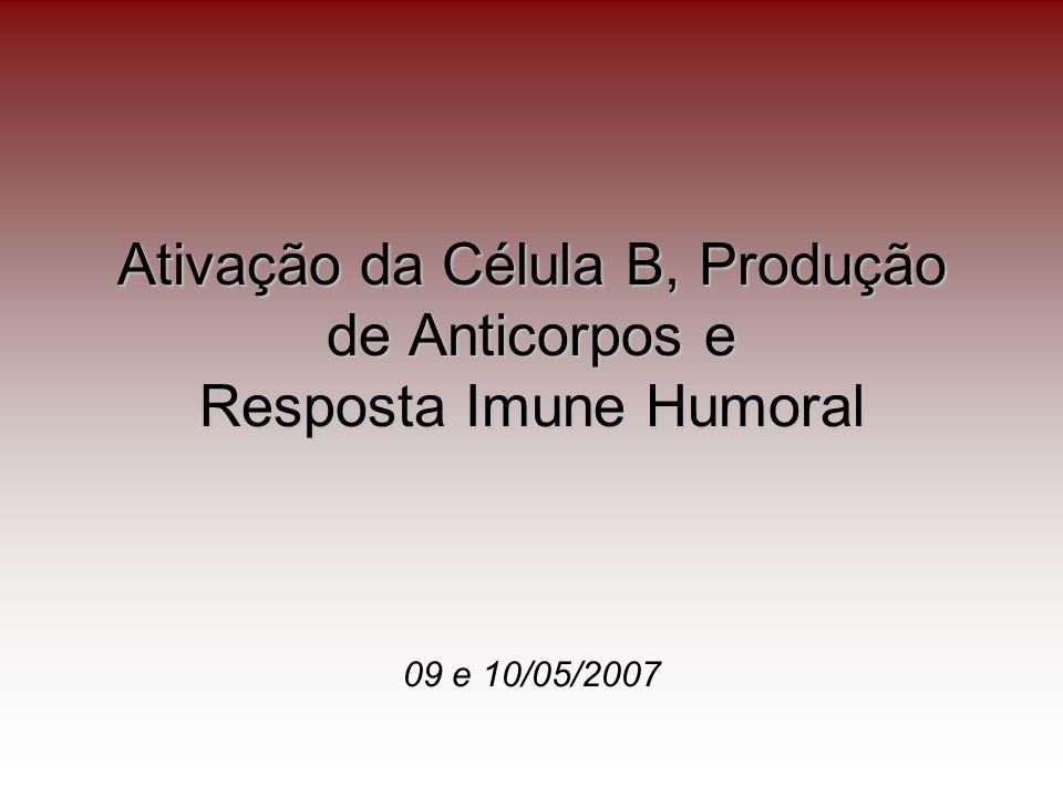 Características Gerais da Resposta Imune Humoral Início da resposta humoral ocorre nos órgãos linfóides periféricos como baço, linfonodos e tecidos linfóides da mucosa; Resposta dos anticorpos aos antígenos requer ou não a participação dos Linfócitos T auxiliares.