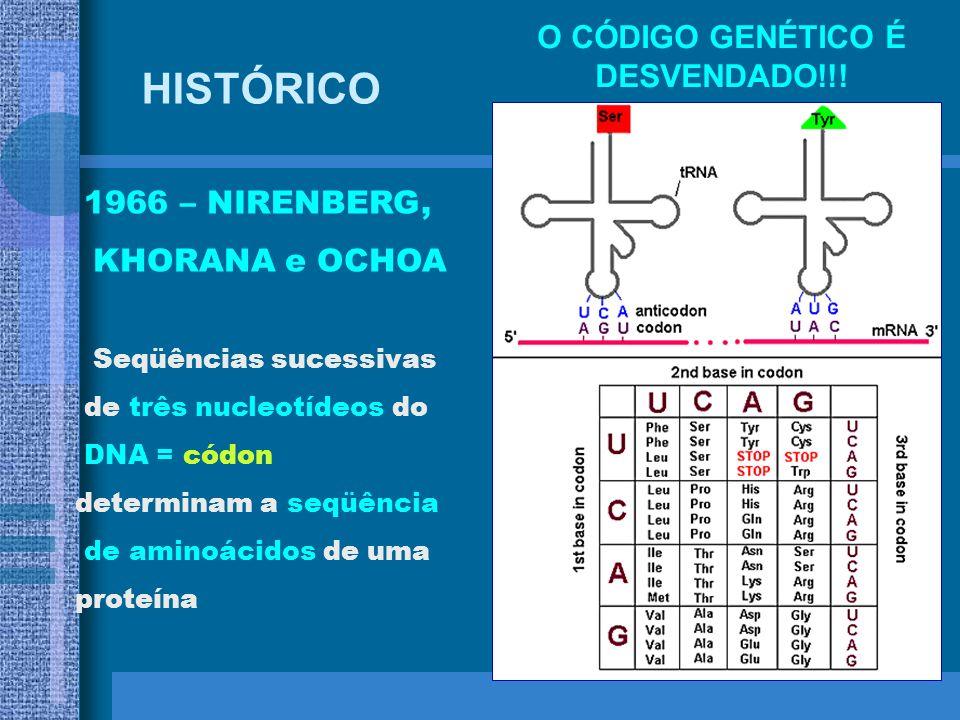 1961 – BRENNER, JACOB e MESELSON RNA m é a molécula que leva informação do DNA no núcleo para a maquinaria de produção de proteínas no citoplasma HIST