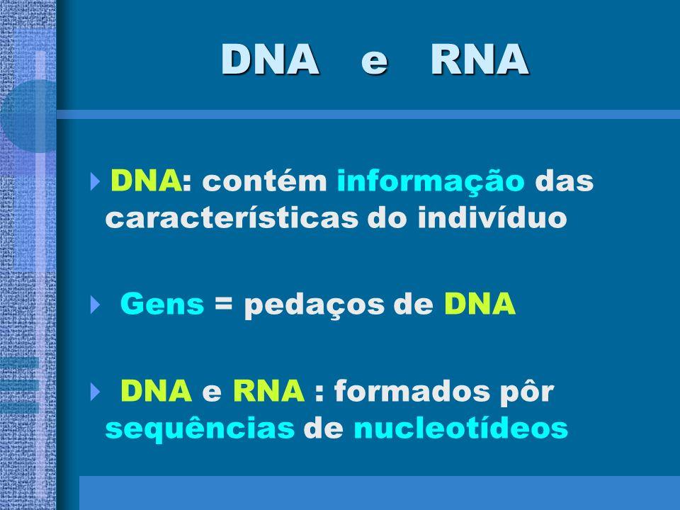 TIPOS DE ÁCIDOS NUCLÉICOS –Ácido desoxirribonucléico ou DNA e ácido ribonucléico ou RNA –Ambos são polímeros lineares de nucleotídios conectados entre