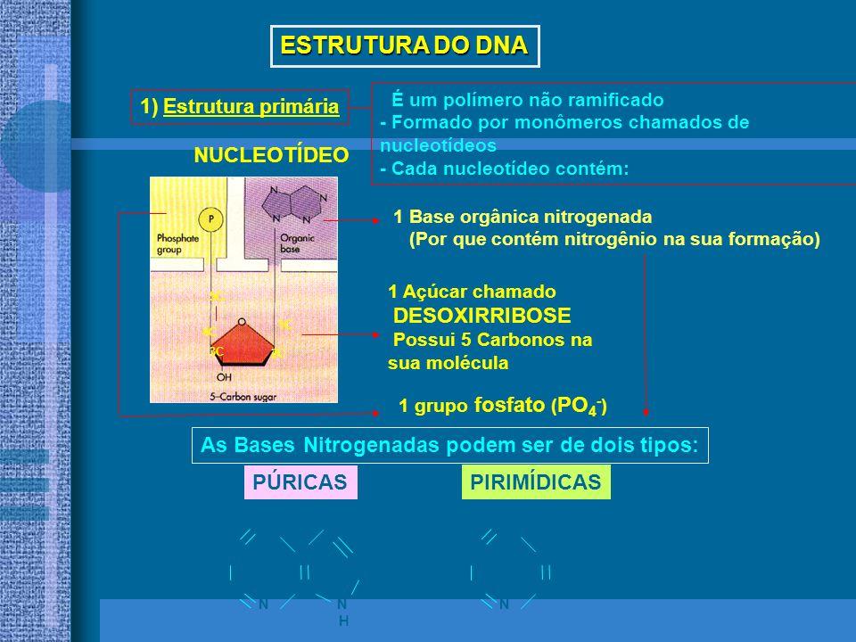 DNA e RNA DNA: contém informação das características do indivíduo Gens = pedaços de DNA DNA e RNA : formados pôr sequências de nucleotídeos