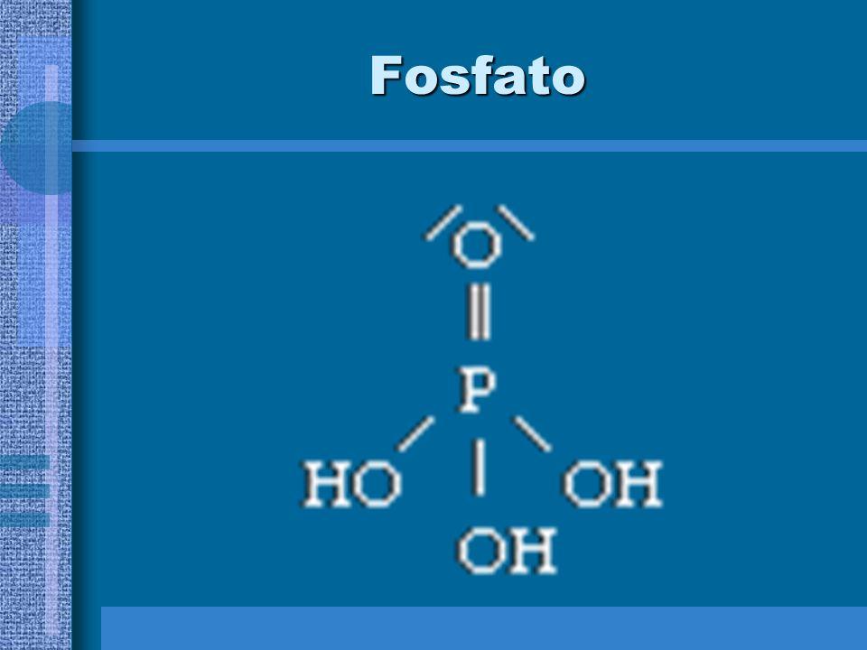 NUCLEOTÍDIOS São unidades básicas dos ácidos nucléicos, e constituídos de: –Uma base nitrogenada = anel heterocíclico de átomos de carbono e nitrogêni