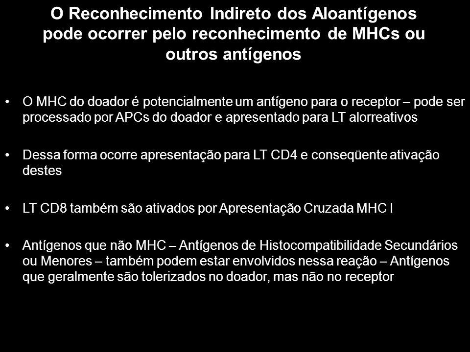 O Reconhecimento Indireto dos Aloantígenos pode ocorrer pelo reconhecimento de MHCs ou outros antígenos Figura 10-1 O MHC do doador é potencialmente u