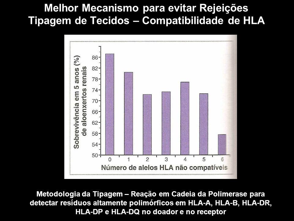 Melhor Mecanismo para evitar Rejeições Tipagem de Tecidos – Compatibilidade de HLA Figura 10-1 Metodologia da Tipagem – Reação em Cadeia da Polimerase