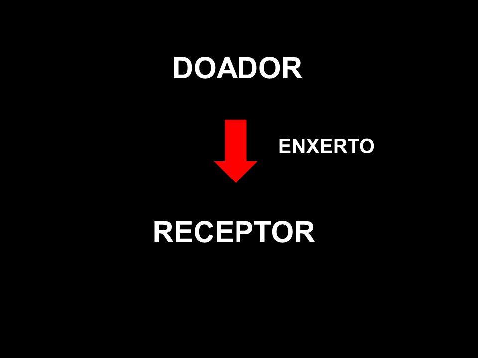 DOADOR RECEPTOR ENXERTO