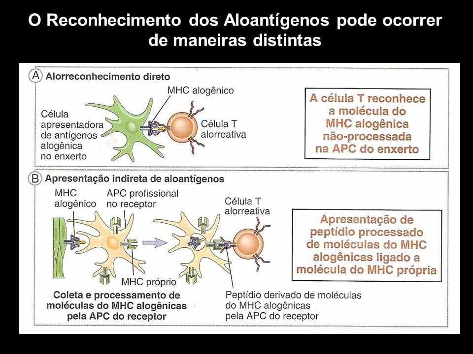 O Reconhecimento dos Aloantígenos pode ocorrer de maneiras distintas Figura 10-1
