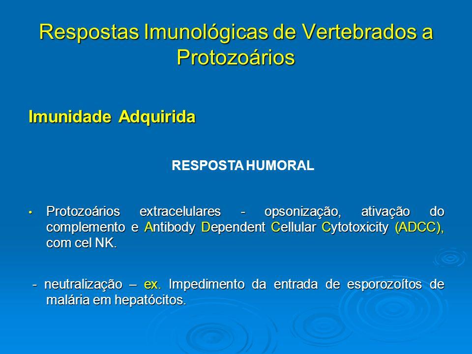 Respostas Imunológicas de Vertebrados a Protozoários Imunidade Adquirida Protozoários extracelulares - opsonização, ativação do complemento e Antibody