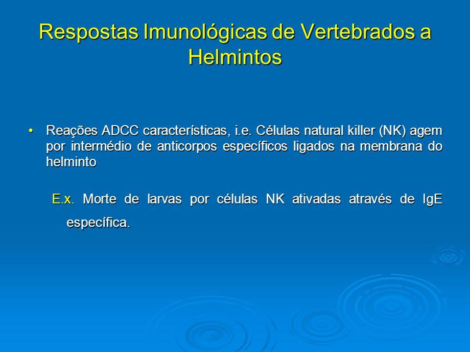 Respostas Imunológicas de Vertebrados a Helmintos Reações ADCC características, i.e. Células natural killer (NK) agem por intermédio de anticorpos esp