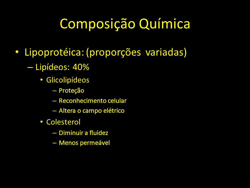 Composição Química Lipoprotéica: (proporções variadas) – Lipídeos: 40% Glicolipídeos – Proteção – Reconhecimento celular – Altera o campo elétrico Col