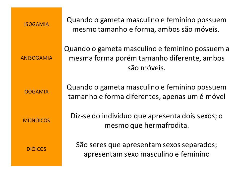 ISOGAMIA Quando o gameta masculino e feminino possuem mesmo tamanho e forma, ambos são móveis. ANISOGAMIA Quando o gameta masculino e feminino possuem