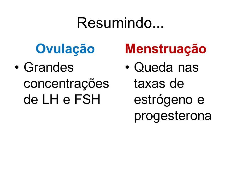 Resumindo... Ovulação Grandes concentrações de LH e FSH Menstruação Queda nas taxas de estrógeno e progesterona