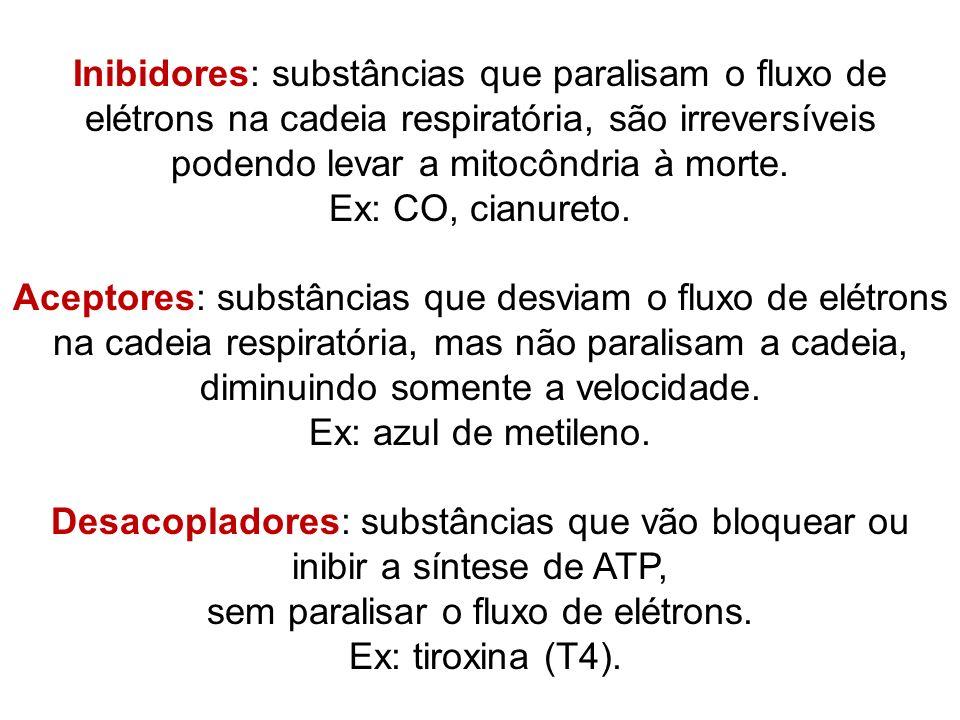 Inibidores: substâncias que paralisam o fluxo de elétrons na cadeia respiratória, são irreversíveis podendo levar a mitocôndria à morte. Ex: CO, cianu
