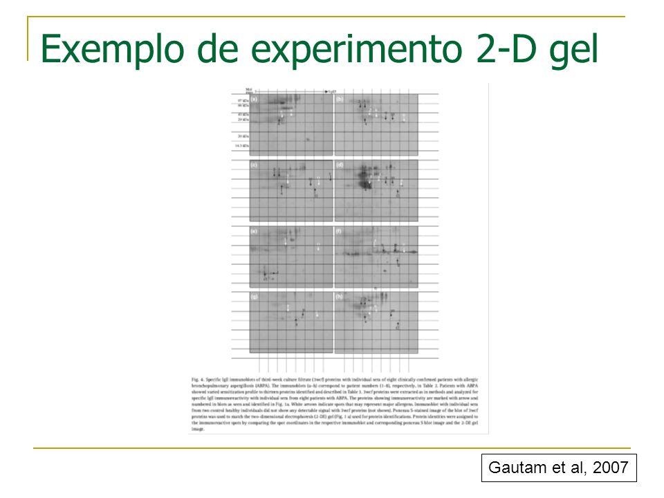 Gautam et al, 2007