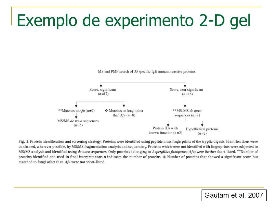 Exemplo de experimento 2-D gel Gautam et al, 2007