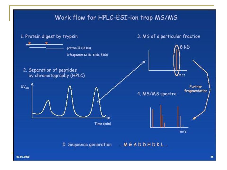 Sequenciamento de peptídeos Peptídeos de 2.5 kDa ou menos dão melhores resultados. Proteínas retiradas de géis 2-D e digeridas Peptídeos fragmentados