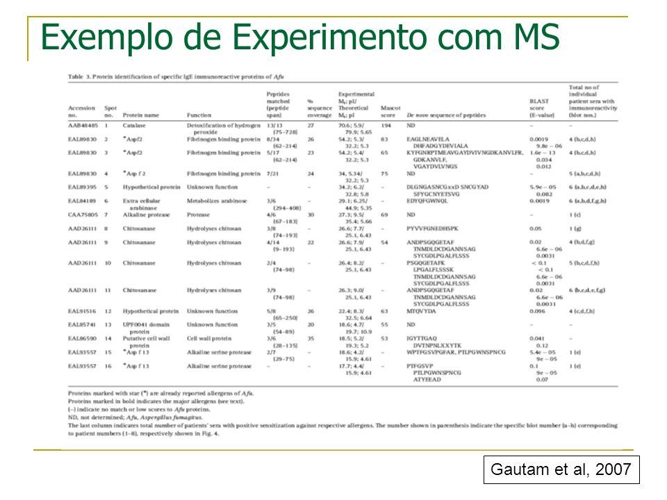 Exemplo de Experimento com MS Gautam et al, 2007