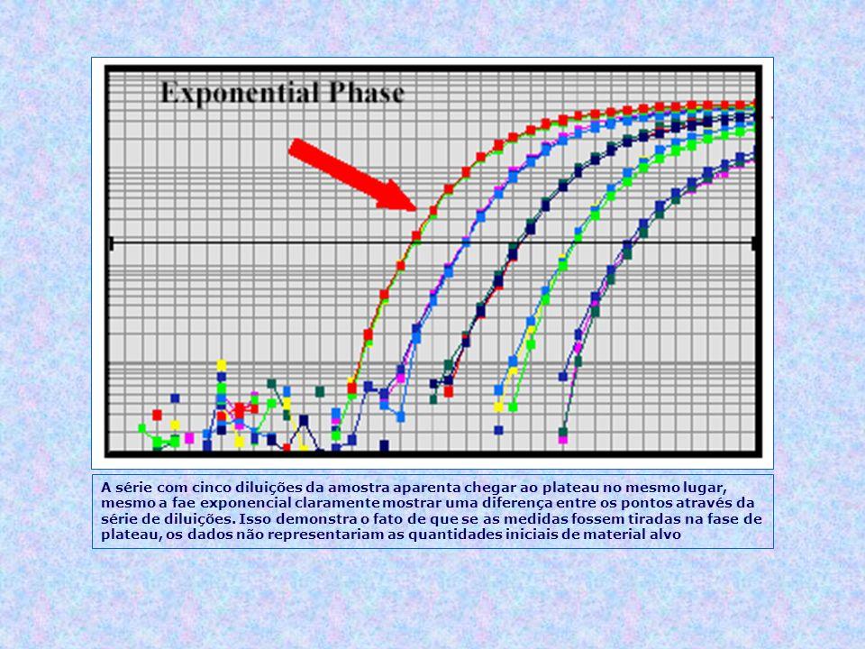 A série com cinco diluições da amostra aparenta chegar ao plateau no mesmo lugar, mesmo a fae exponencial claramente mostrar uma diferença entre os po