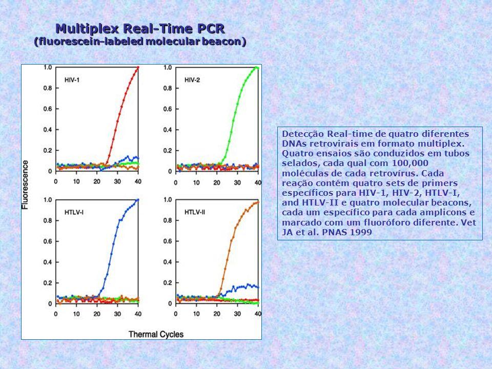 Detecção Real-time de quatro diferentes DNAs retrovirais em formato multiplex. Quatro ensaios são conduzidos em tubos selados, cada qual com 100,000 m