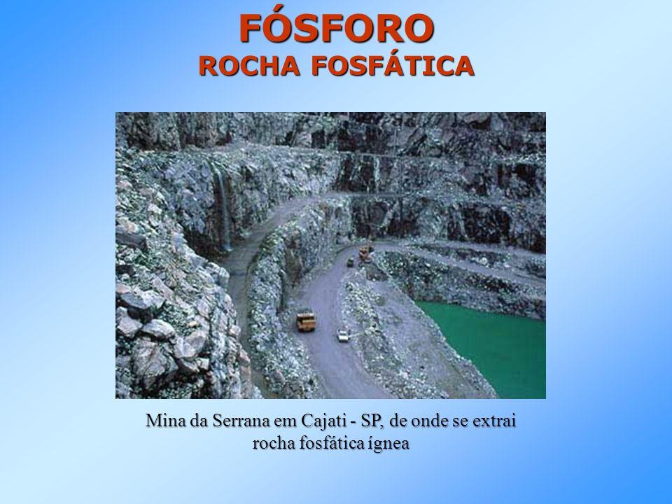 PROCESSO DE TRATAMENTO DE ROCHA FOSFÁTICA Processo utilizado pela empresa Serrana e descrito no site: http://www.serrana.com.br/nutricaoanimal/processodeproducao.asp Ensacamento e expedição