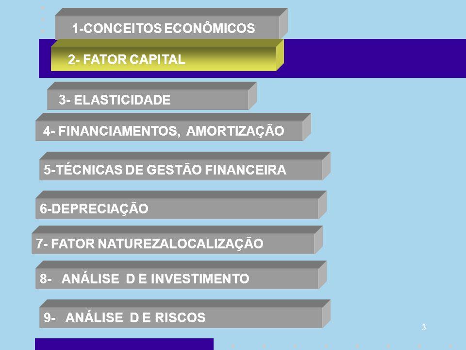 3 1-CONCEITOS ECONÔMICOS 2- FATOR CAPITAL 3- ELASTICIDADE 4- FINANCIAMENTOS, AMORTIZAÇÃO 5-TÉCNICAS DE GESTÃO FINANCEIRA 6-DEPRECIAÇÃO 7- FATOR NATURE