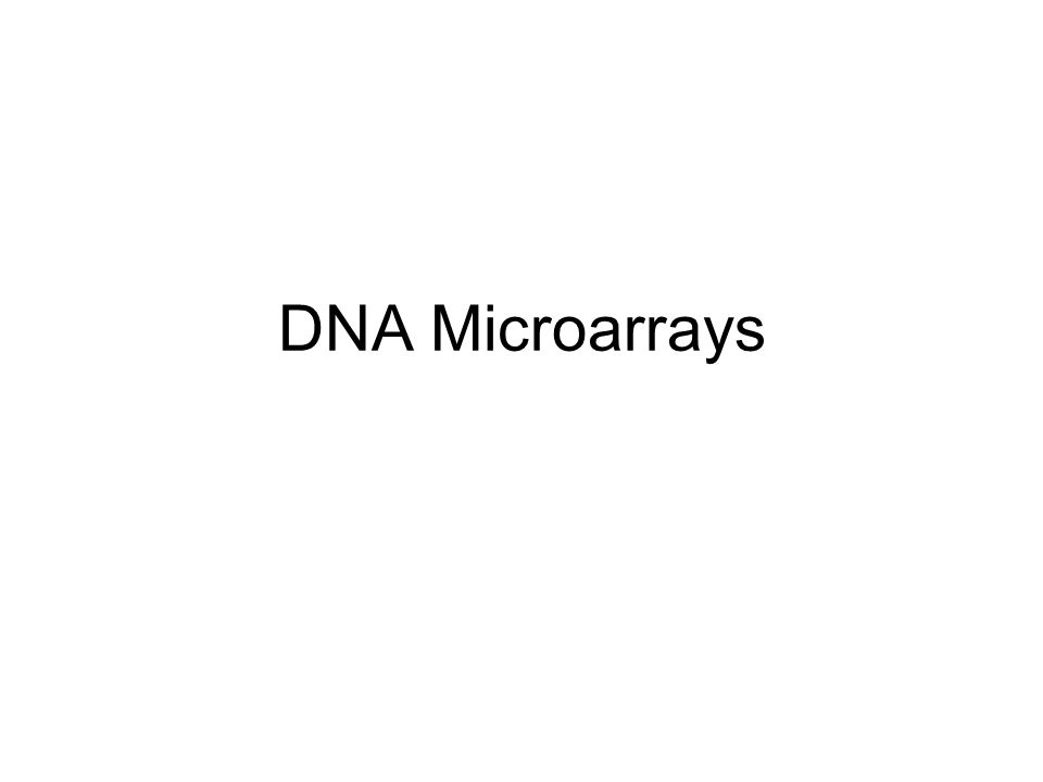 O que é DNA Microarray.