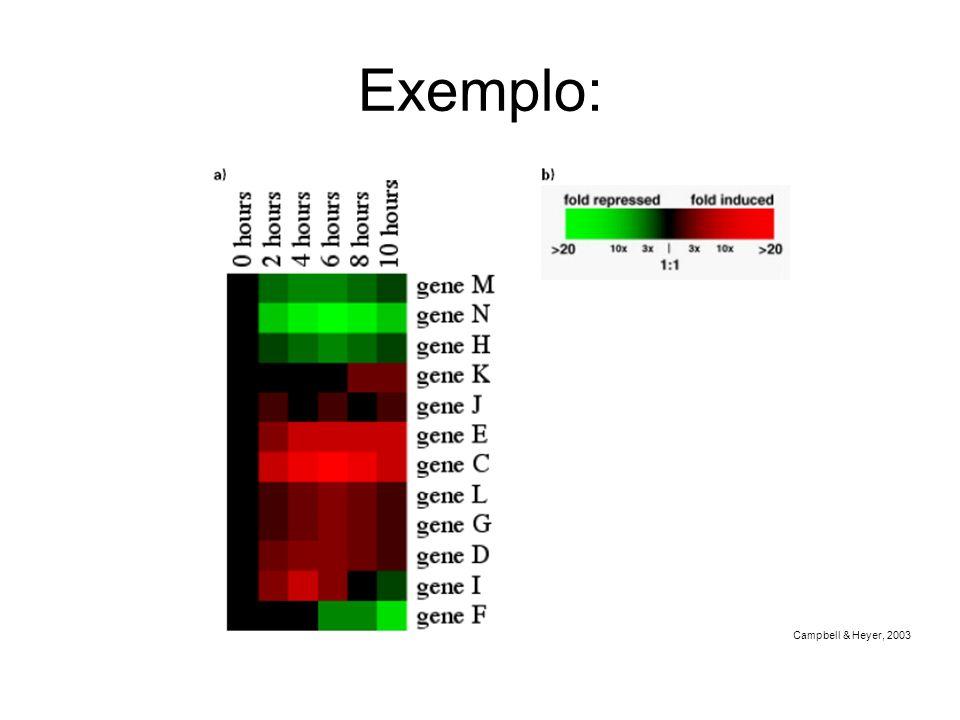 Exemplo: Campbell & Heyer, 2003