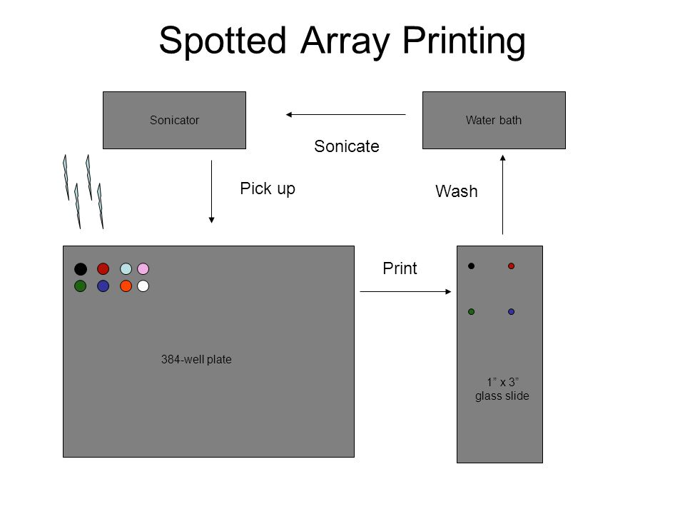 Print 384-well plate 1 x 3 glass slide Water bath Wash Sonicator Spotted Array Printing Sonicate Pick up