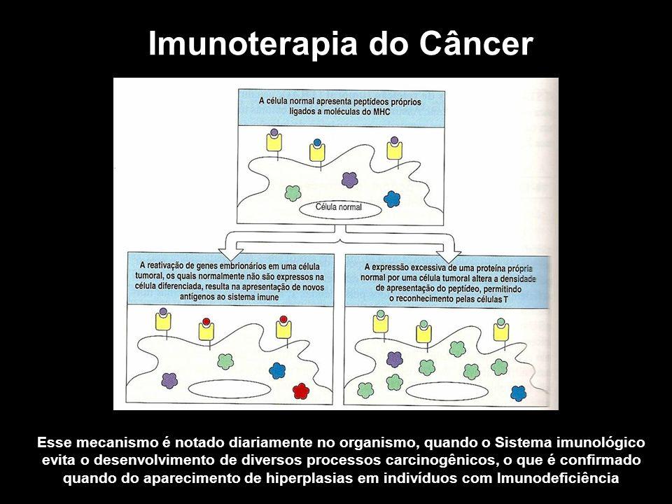 Imunoterapia do Câncer Esse mecanismo é notado diariamente no organismo, quando o Sistema imunológico evita o desenvolvimento de diversos processos ca
