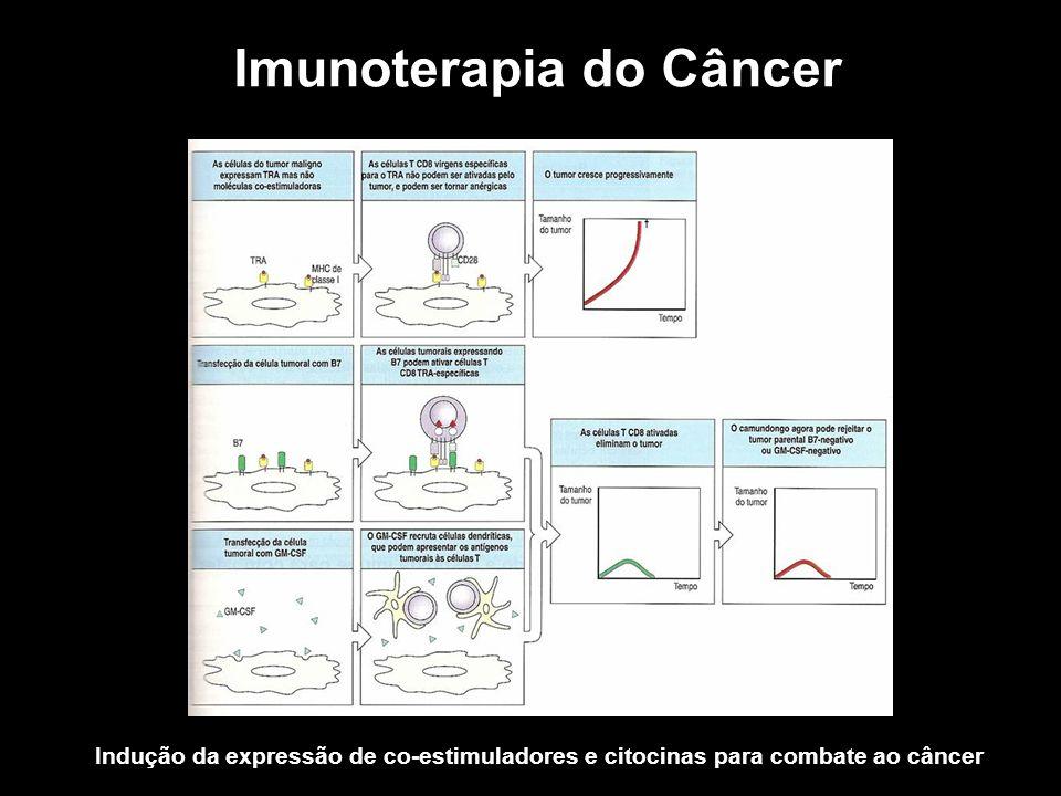 Imunoterapia do Câncer Indução da expressão de co-estimuladores e citocinas para combate ao câncer