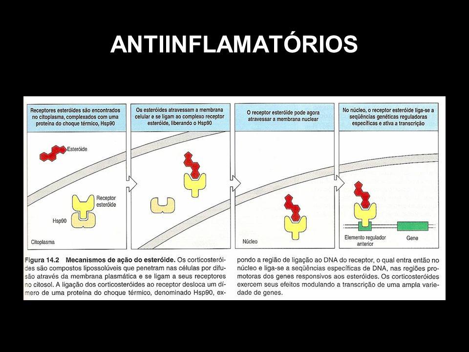Imunoterapia das Alergias Dessensibilização: mecanismo através do qual são inoculadas doses pequenas e crescentes de alérgeno, com o objetivo de desvio da produção de IgE para IgG e também tolerização, com a morte dos linfócitos específicos.