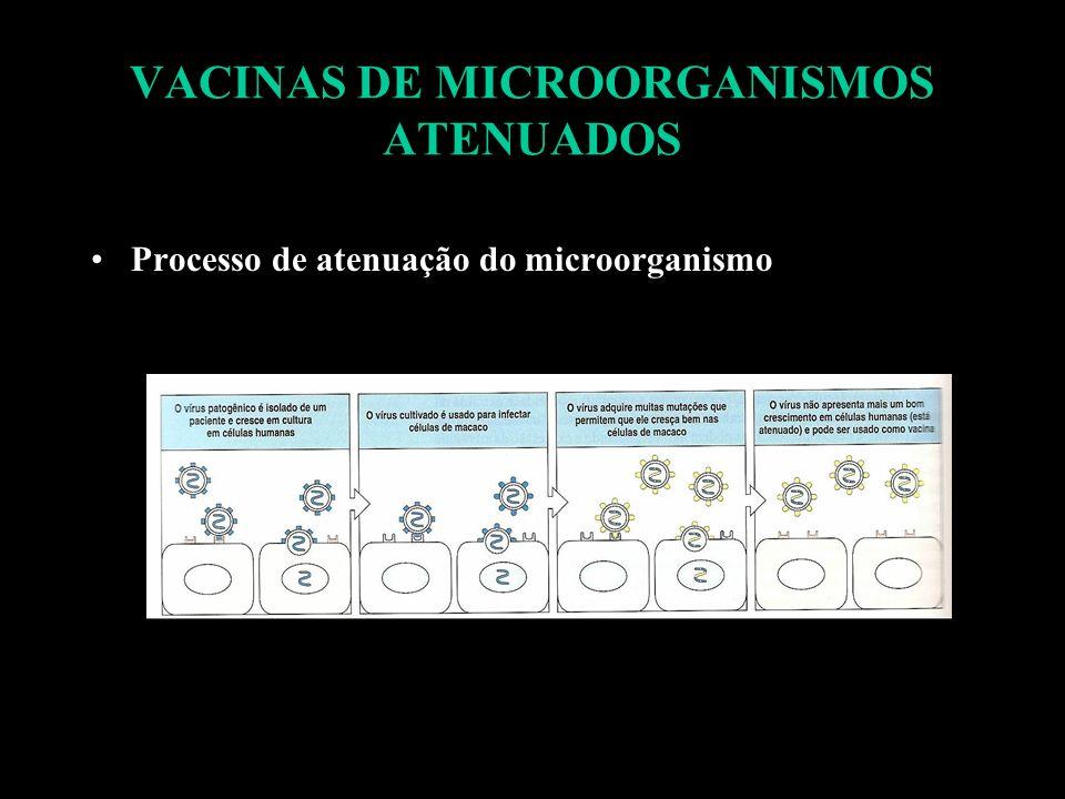 VACINAS DE MICROORGANISMOS ATENUADOS Processo de atenuação do microorganismo