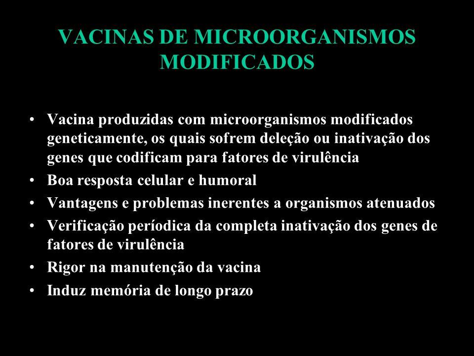 VACINAS DE MICROORGANISMOS MODIFICADOS Vacina produzidas com microorganismos modificados geneticamente, os quais sofrem deleção ou inativação dos gene