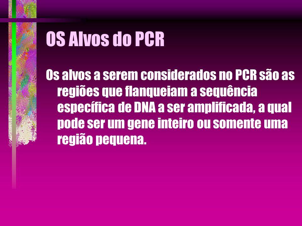 OS Alvos do PCR Os alvos a serem considerados no PCR são as regiões que flanqueiam a sequência específica de DNA a ser amplificada, a qual pode ser um