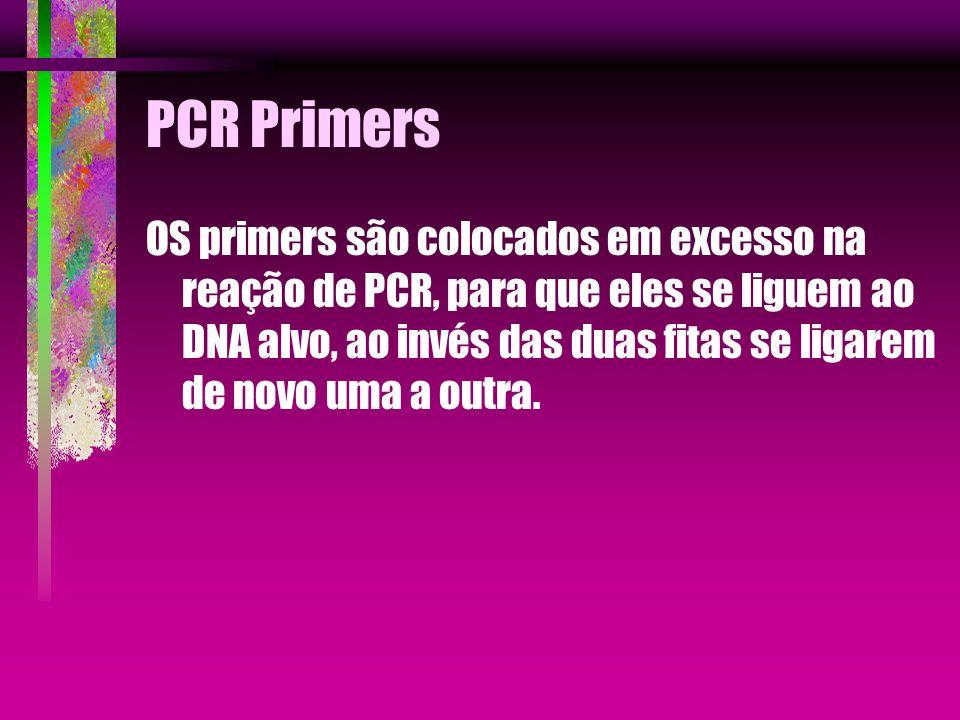 PCR Primers OS primers são colocados em excesso na reação de PCR, para que eles se liguem ao DNA alvo, ao invés das duas fitas se ligarem de novo uma