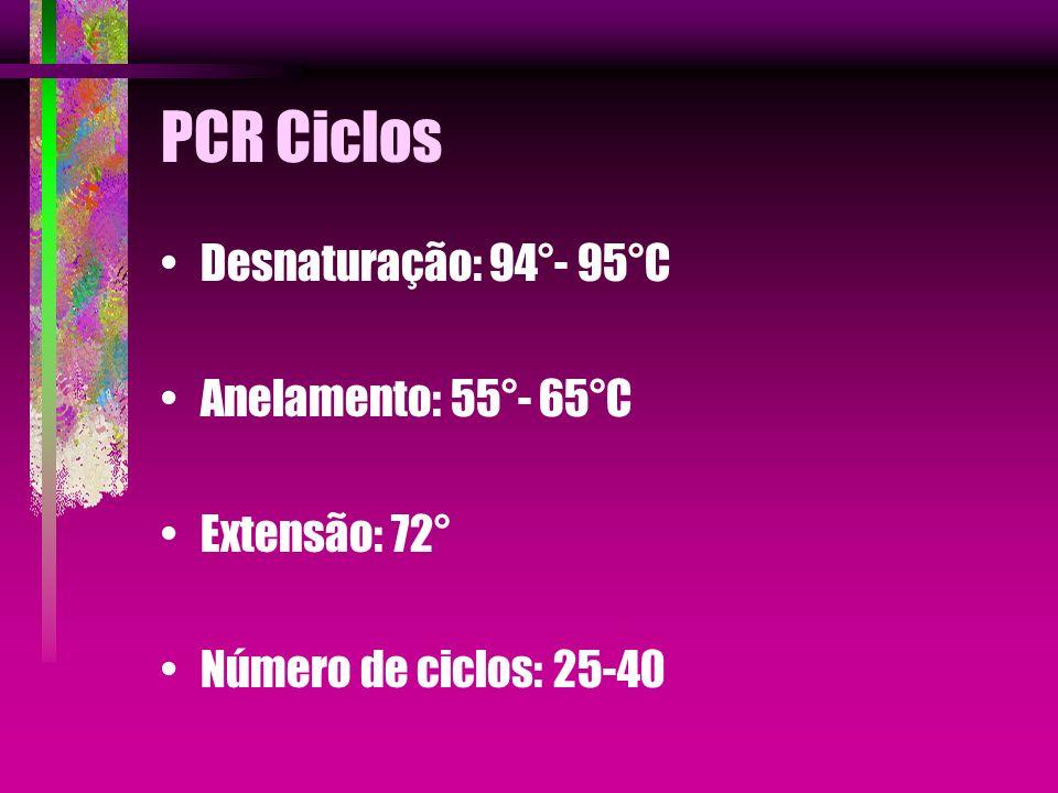 PCR Ciclos Desnaturação: 94°- 95°C Anelamento: 55°- 65°C Extensão: 72° Número de ciclos: 25-40