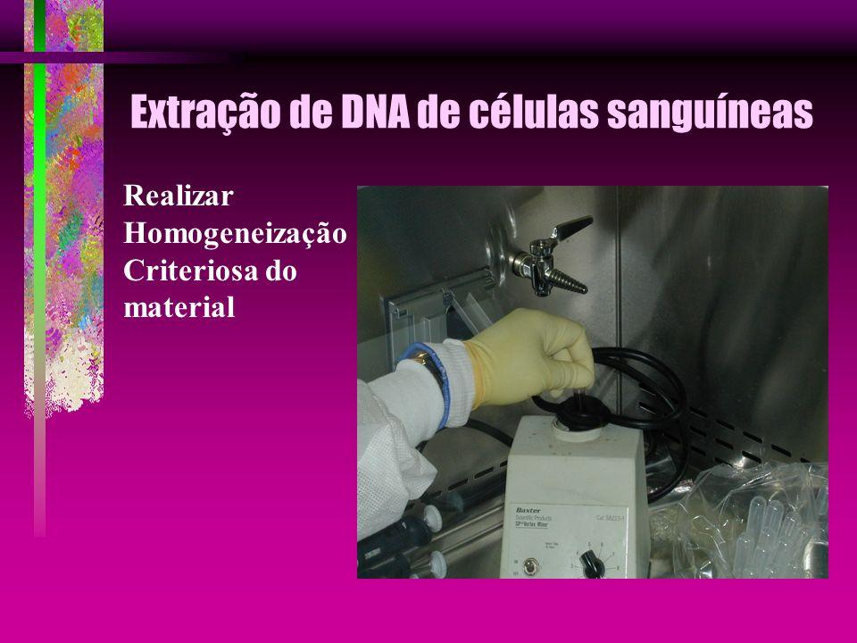Extração de DNA de células sanguíneas Realizar Homogeneização Criteriosa do material