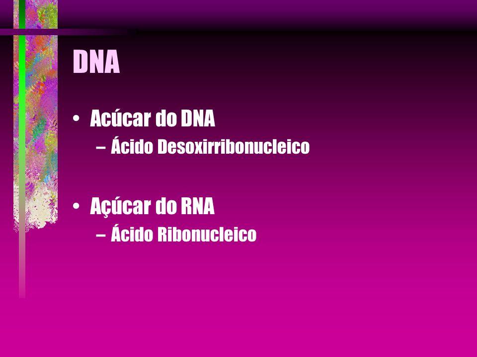 DNA O DNA tem quatro bases nitrogenadas.