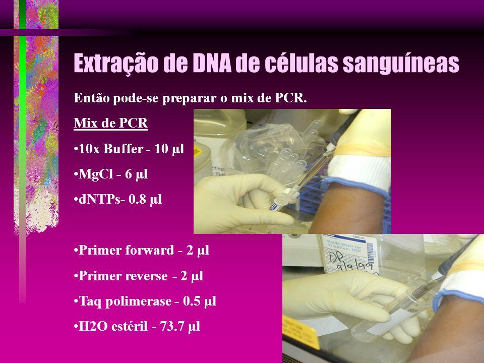Extração de DNA de células sanguíneas Então pode-se preparar o mix de PCR. Mix de PCR 10x Buffer - 10 µl MgCl - 6 µl dNTPs- 0.8 µl Primer forward - 2