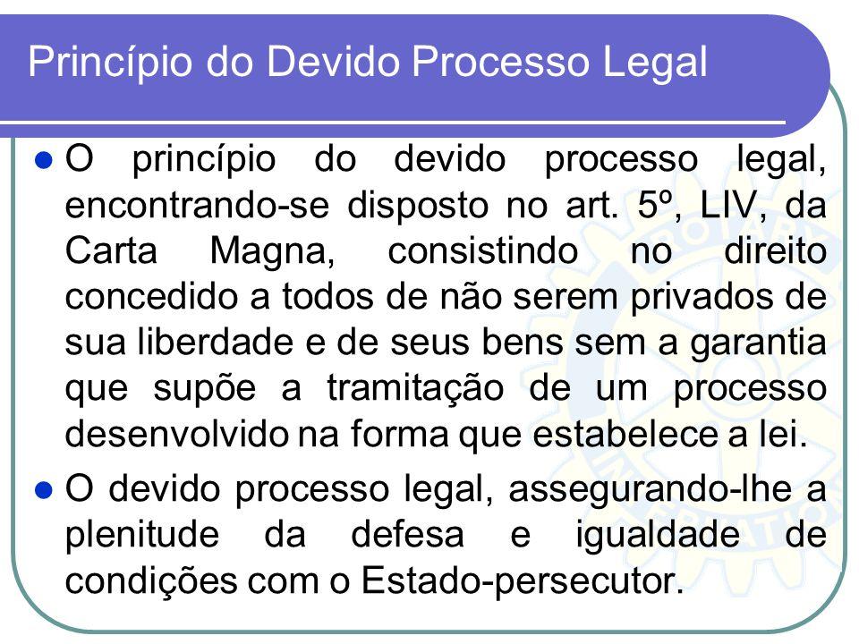 A garantia do promotor natural consagra a independência do órgão de acusação pública. Representa, ainda, uma garantia de ordem individual, já que limi