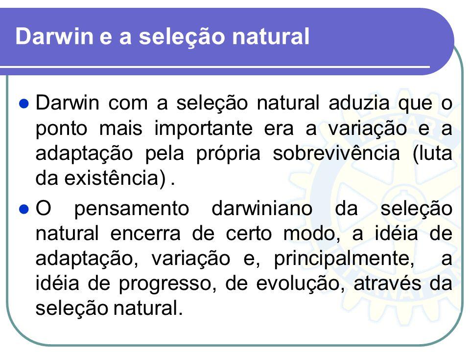 Da seleção natural Dei o nome de seleção natural ou persistência do mais apto à conservação das diferenças e das variações individuais favoráveis e à eliminação das variações nocivas.