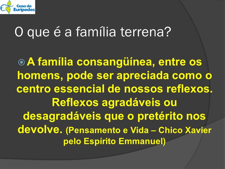 O que é a família terrena? A família consangüínea, entre os homens, pode ser apreciada como o centro essencial de nossos reflexos. Reflexos agradáveis