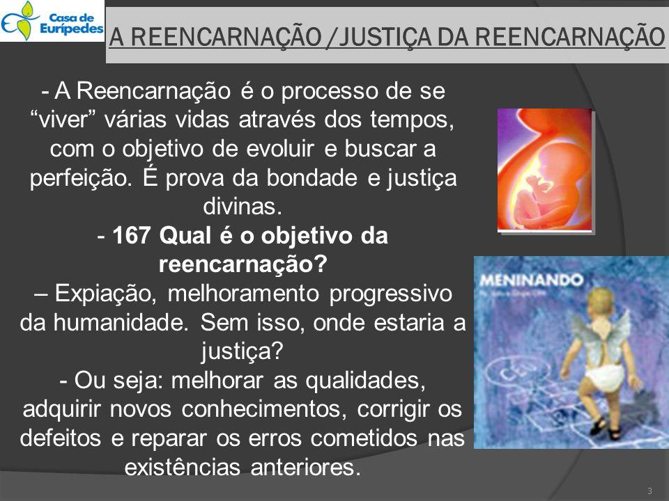 A REENCARNAÇÃO /JUSTIÇA DA REENCARNAÇÃO - A Reencarnação é o processo de se viver várias vidas através dos tempos, com o objetivo de evoluir e buscar