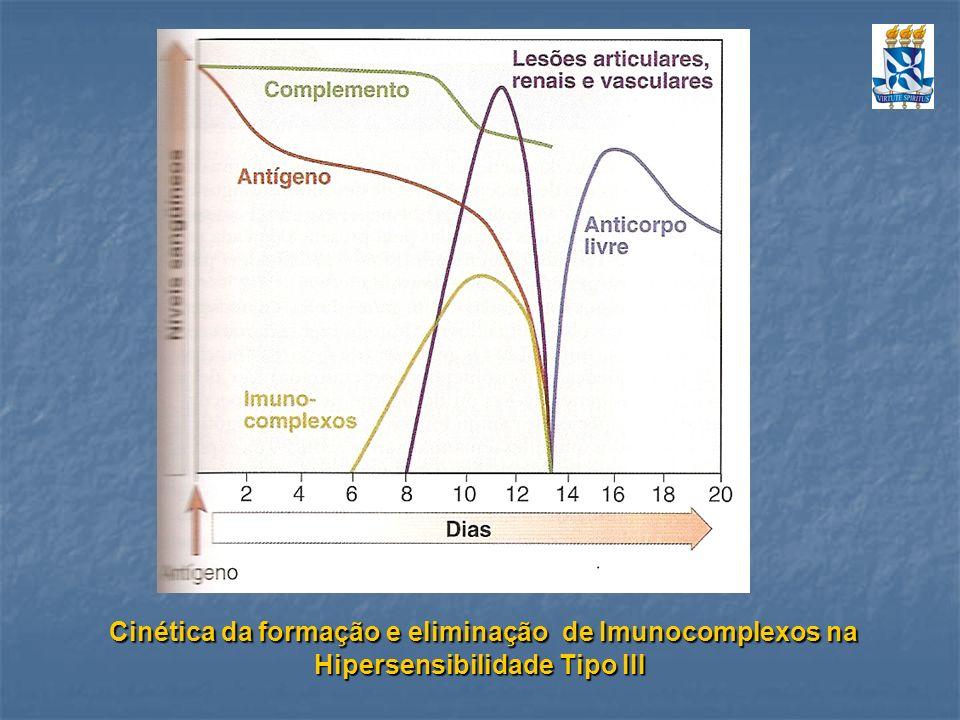 Cinética da formação e eliminação de Imunocomplexos na Hipersensibilidade Tipo III