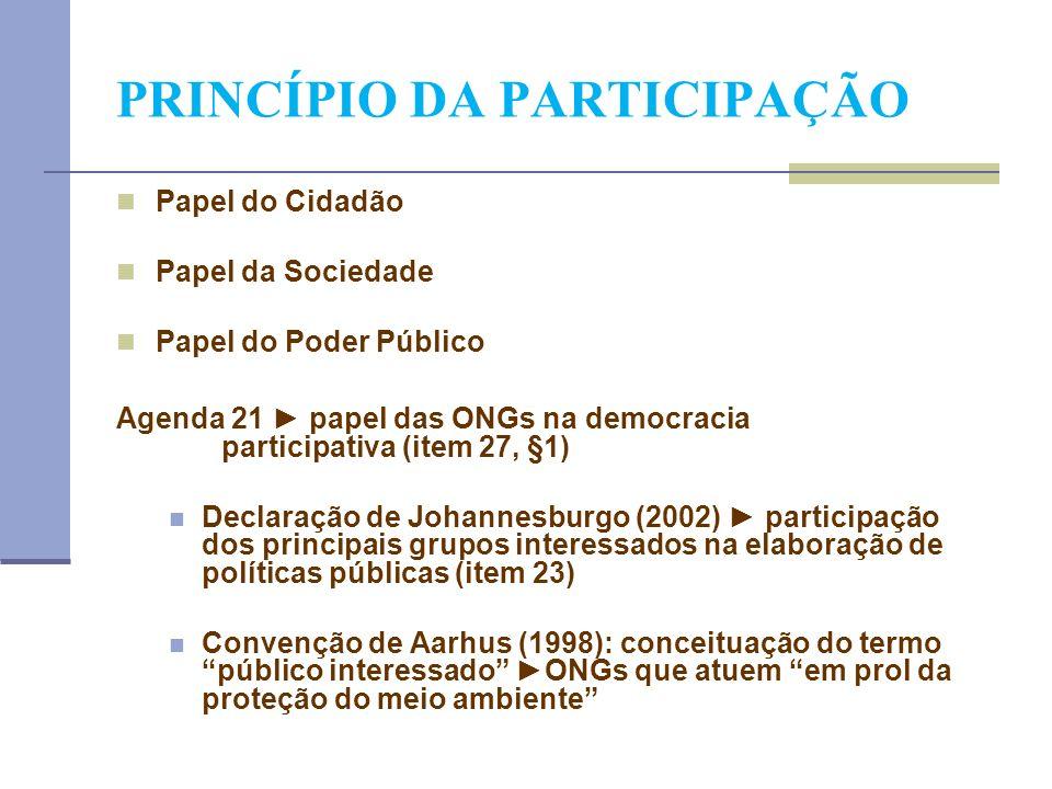PRINCÍPIO DA PARTICIPAÇÃO Papel do Cidadão Papel da Sociedade Papel do Poder Público Agenda 21 papel das ONGs na democracia participativa (item 27, §1