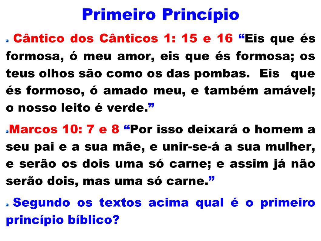Resposta: É o princípio bíblico da Procriação.