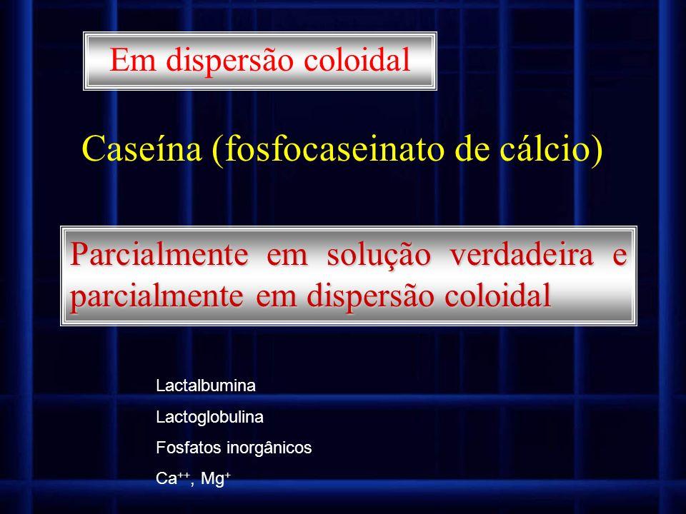 Em dispersão coloidal Caseína (fosfocaseinato de cálcio) Parcialmente em solução verdadeira e parcialmente em dispersão coloidal Lactalbumina Lactoglo